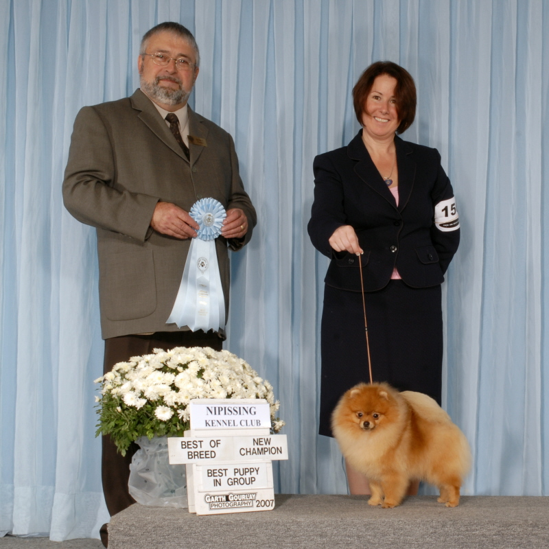 Puppy Group New Champion - Judge Sonny Tougas - October 2007
